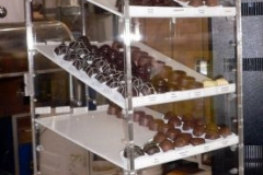 display-cases-(14)