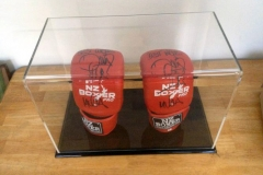Acrylic display case with boxing gloves